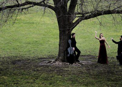 Stefan Zweig Trio unterm Baum  |  Foto: Nancy Horowitz